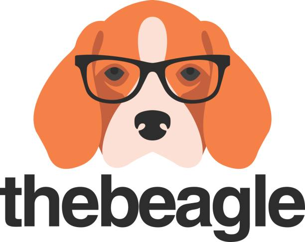 Beagle with glasses This is a beagle wearing hipster glasses. It´s a cool icon for any cool and modern brand. beagle stock illustrations