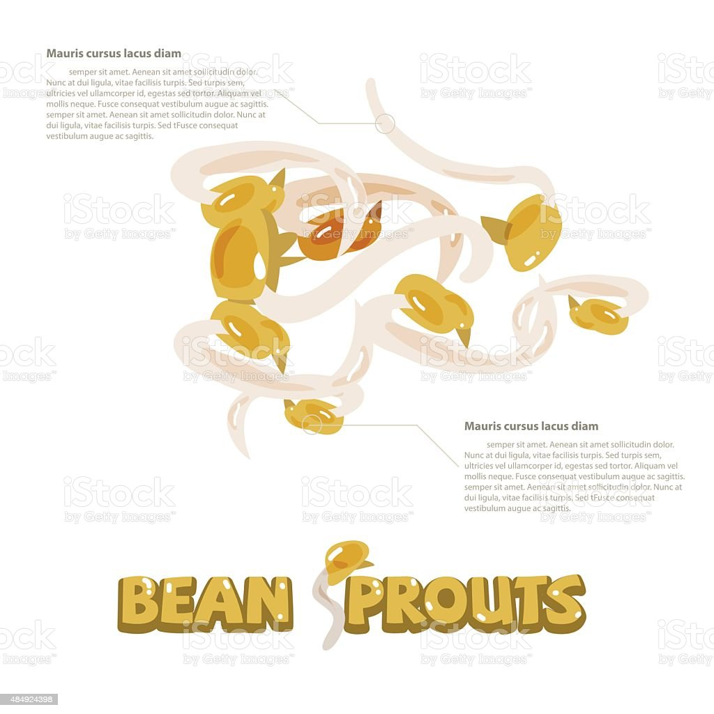 bean sprouts with typographic design - vector vector art illustration