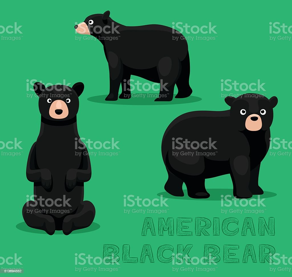 Bear American Black Bear Cartoon Vector Illustration vector art illustration