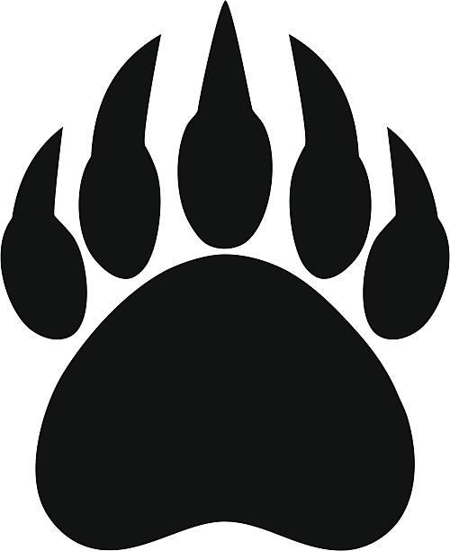 bear claw print - bear stock illustrations