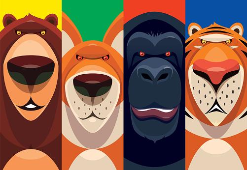 bear fox chimpanzee tiger