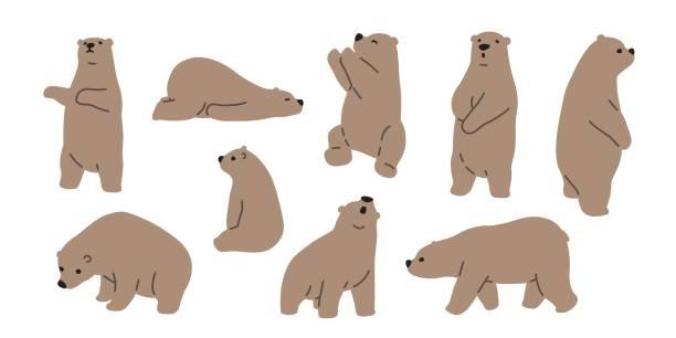 illustrations, cliparts, dessins animés et icônes de ours grizzly ours teddy icône illustration doodle - ours