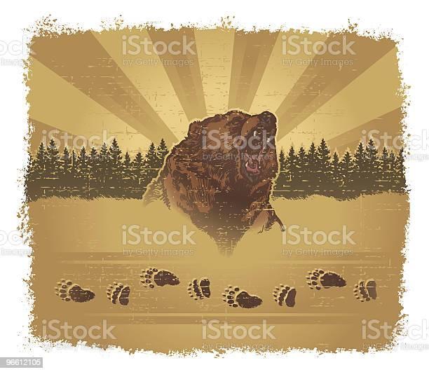 Bear Grunge-vektorgrafik och fler bilder på Barrväxter