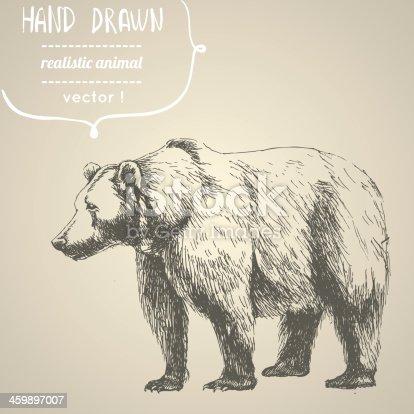 istock Bear. Hand drawn vector illustration. 459897007