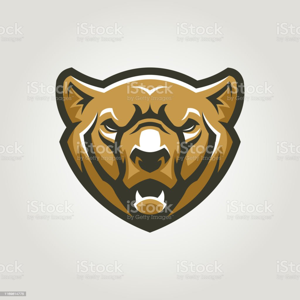 Bear head with open mouth. Angry grizzly bear vector character.