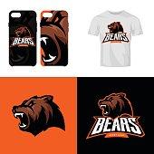 Bear head sport club isolated vector icon concept.