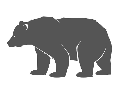 Bear icon. Vector concept illustration for design. Bear icon silhouette.