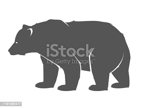 Illustration of bear, standing in profile.