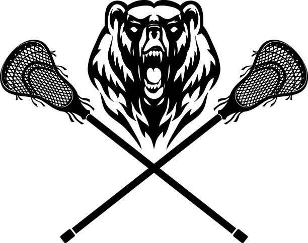 Bear Mascot and Lacrosse Stick vector art illustration