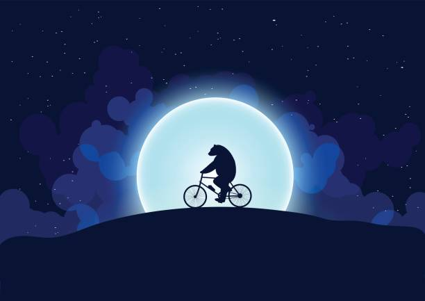 a bear on a bicycle - lustige fahrrad stock-grafiken, -clipart, -cartoons und -symbole