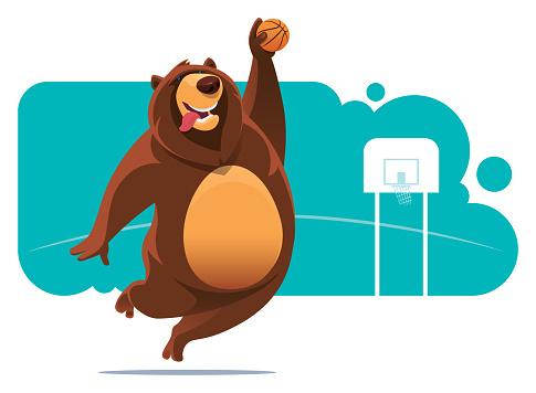 bear play basketball