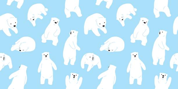 Royalty Free Polar Bear Clip Art Vector Images Illustrations Istock