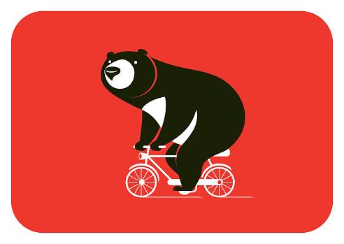 bear riding bicycle