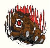 A Bear ripping through your shirt!