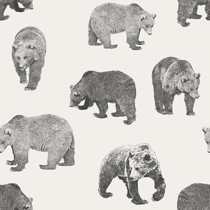Bear Seamless Repeat Pattern