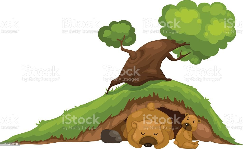 bear sleeping in cave vector vector art illustration