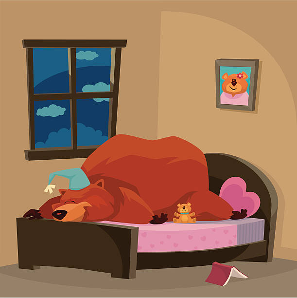 bear sleeping - hibernation stock illustrations