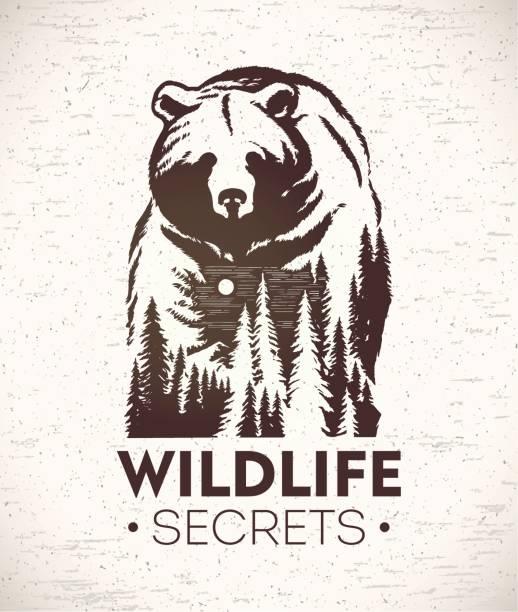 illustrations, cliparts, dessins animés et icônes de ours symbolisant la faune - ours