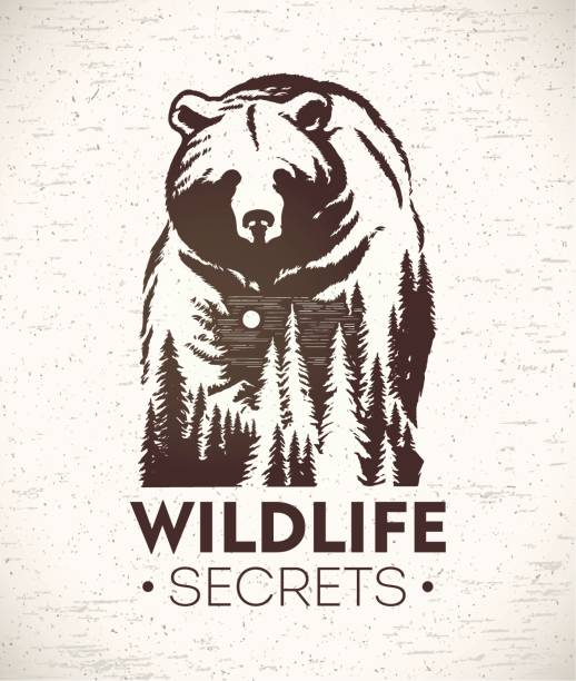 bear symbolizing wildlife - bear stock illustrations