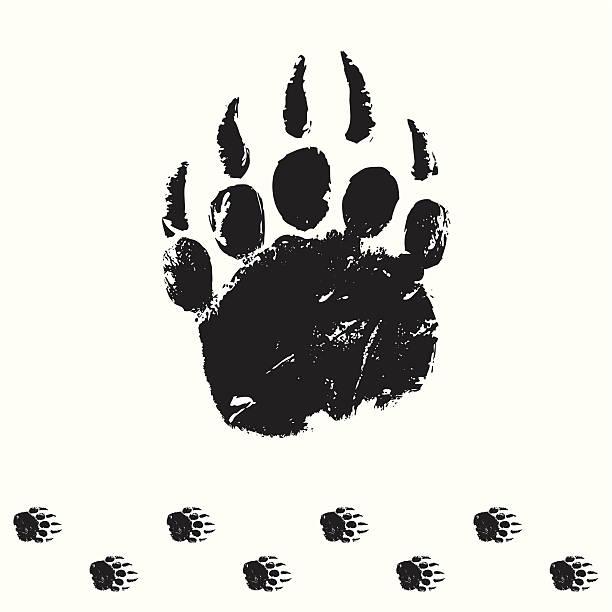 illustrations, cliparts, dessins animés et icônes de bear piste - ours