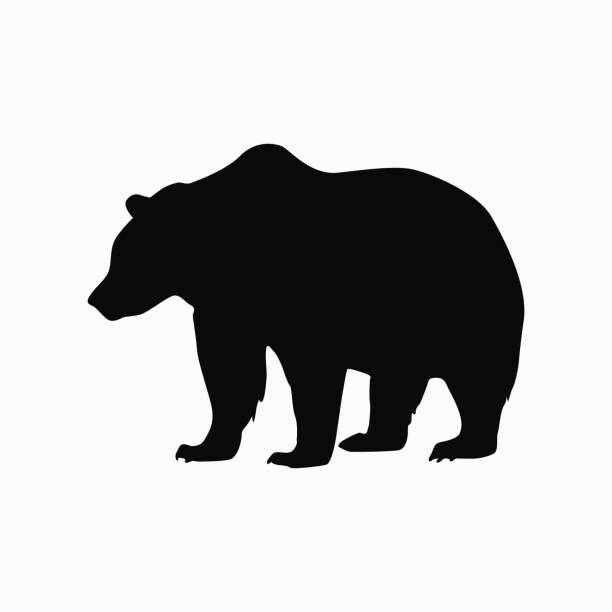 Image result for bear icon