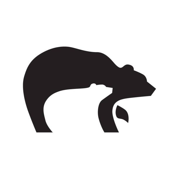 illustrations, cliparts, dessins animés et icônes de ours - ours