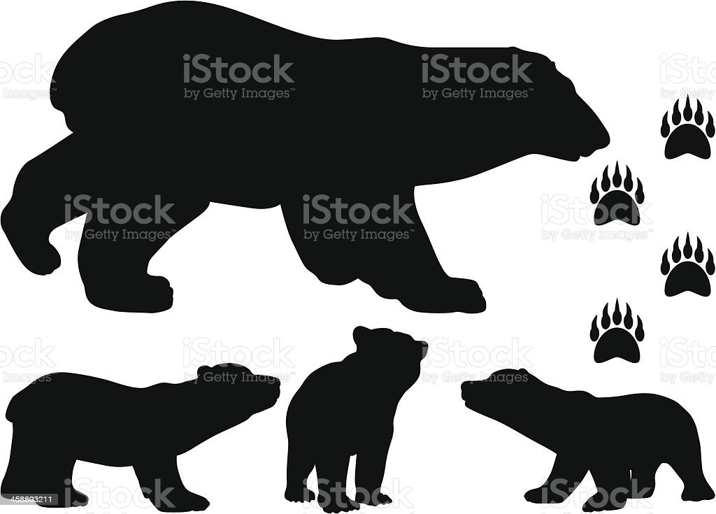 royalty free bear cub clip art vector images illustrations istock rh istockphoto com baby bear cub clipart baby bear cub clipart
