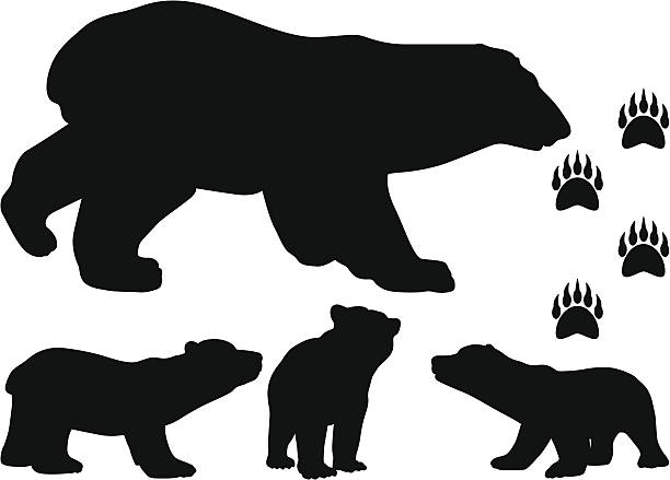Royalty Free Brown Bear Clip Art, Vector Images ...