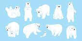 Bear vector polar Bear icon logo illustration character doodle white