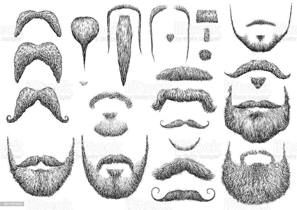 Beard illustration, drawing, engraving, ink, line art, vector vector art illustration