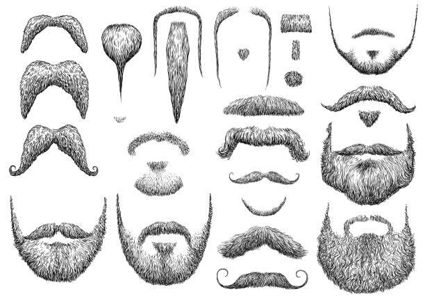 ilustrações, clipart, desenhos animados e ícones de barba de ilustração, desenho, gravura, tinta, linha artística, vetor - bigode