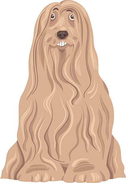 bearded collie dog cartoon vector art illustration