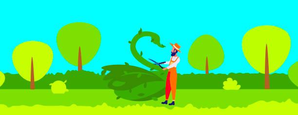 bärengärtner-schnittpflanzen in form von großen schwanenskulpturen topiary gärten konzept tier aus büschen modernen garten stadtbild flach horizontal volle volle länge - gartenskulpturkunst stock-grafiken, -clipart, -cartoons und -symbole