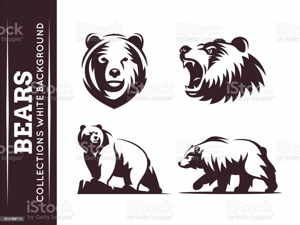 Bears collections vector art illustration