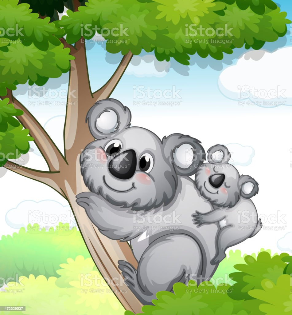Bears in nature royalty-free bears in nature stock vector art & more images of animal