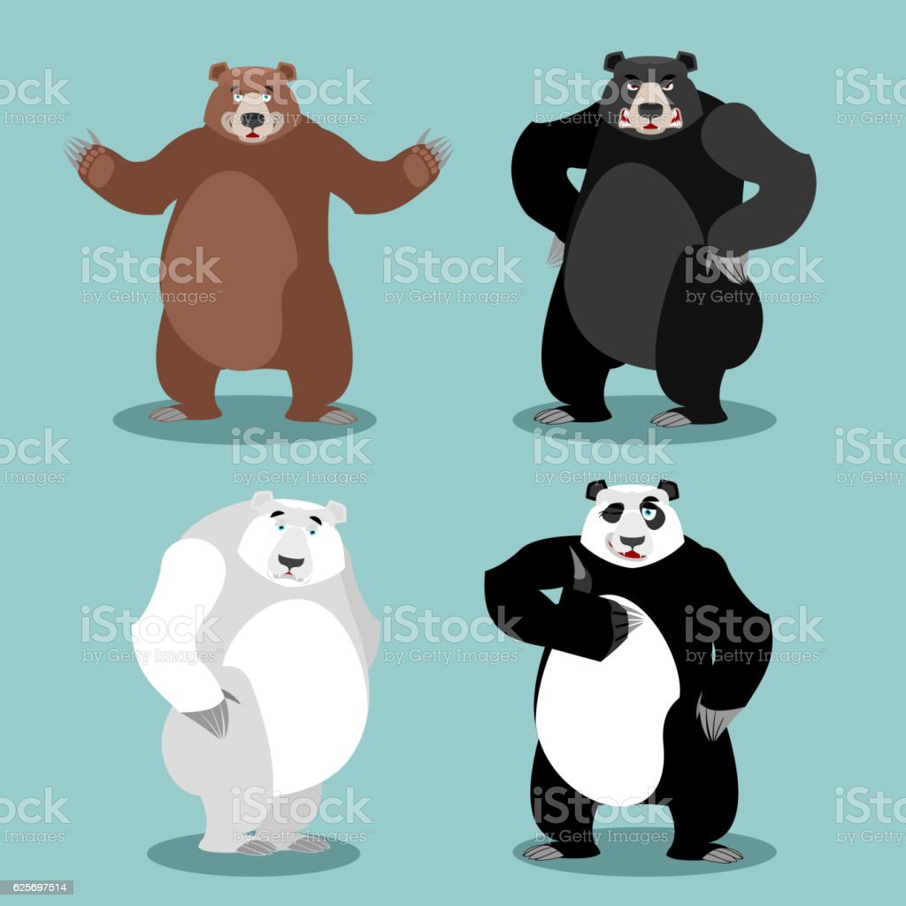bears set Breed. Grizzly and panda. American black bear baribal. vector art illustration