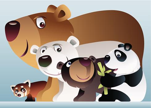 bears united