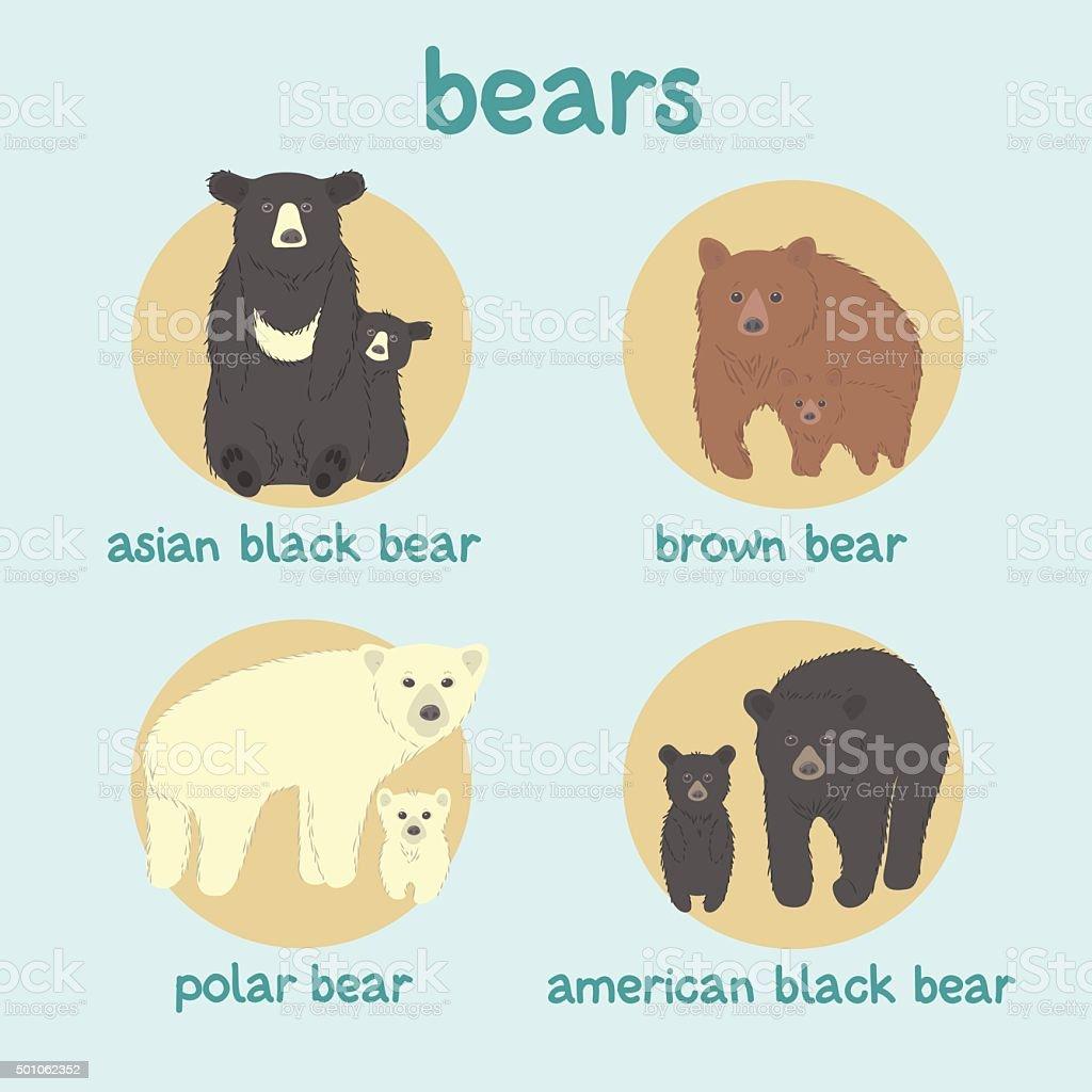 Bears vector set: asian black bear, brown bear, polar bear, american black bear vector art illustration