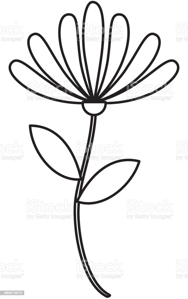 beauiful garden flower icon royalty-free beauiful garden flower icon stock vector art & more images of arts culture and entertainment
