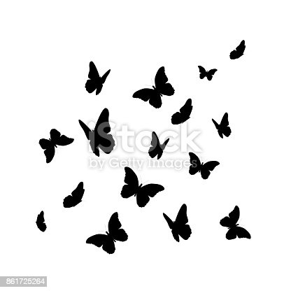 Beautifil Butterfly Silhouette Isolated on White Background Vector Illustration EPS10