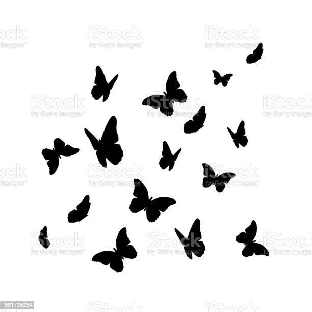 Beautifil butterfly silhouette isolated on white background vect vector id861725264?b=1&k=6&m=861725264&s=612x612&h=ubbx7xru7dka2brbgypreqgwgr483odstm1gwo pjo4=