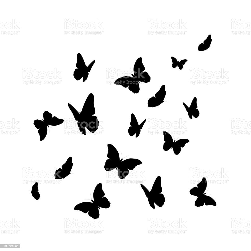 Beautifil Butterfly Silhouette Isolated on White Background Vect vector art illustration