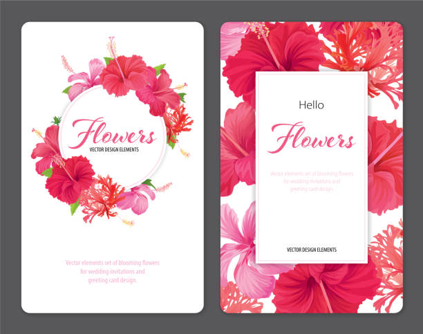 beautifu hibiscus syriacus blumen auf weißem hintergrundvorlage. - hibiskusgarten stock-grafiken, -clipart, -cartoons und -symbole