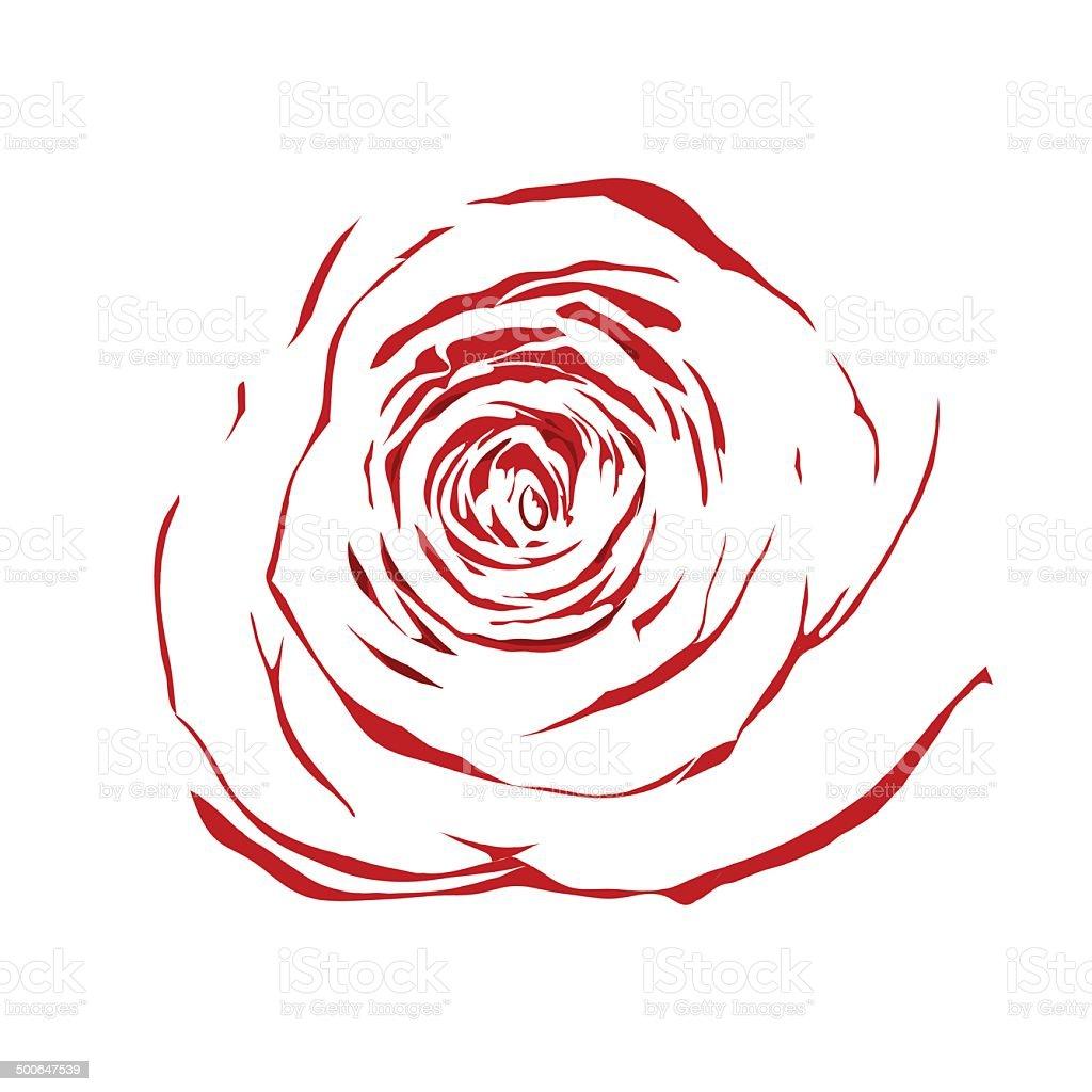 Belo abstrato desenho de rosa vermelha isolada no fundo - Dessin de rose rouge ...