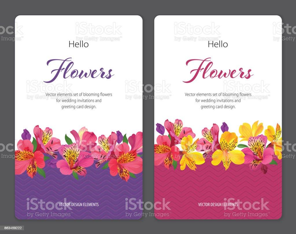 Flores de lirio hermoso alstroemeria en plantilla fondo gráfico y blanco. - ilustración de arte vectorial