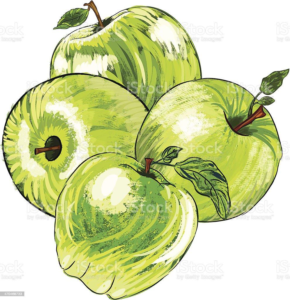 Beautiful Apple royalty-free beautiful apple stock vector art & more images of apple - fruit