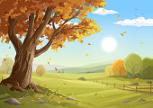 Vector illustration of a beautiful rural landscape with a big colorful tree and autumn leaves in the foreground, bushes, a fence, hills, green meadows and a blue sunny morning sky in the background. Illustration with space for text. Art on layers and easily edited and scaled.