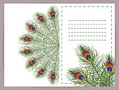 Beautiful  background  feathers peacock  with space for text.