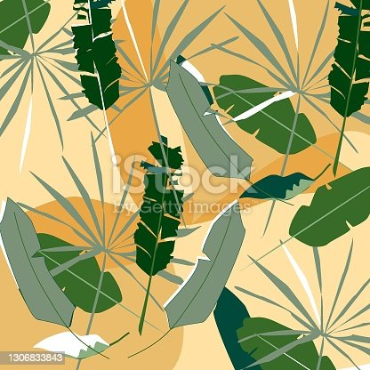 istock beautiful background of banana leaves and green plants. 1306833843