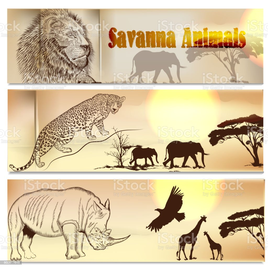 beautiful backgrounds set with savanna animals stock vector art